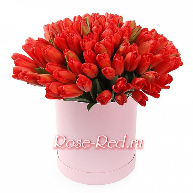 Купить цветы в ставропольском крае заказ цветов в городе железнодорожном с доставкойнедорого