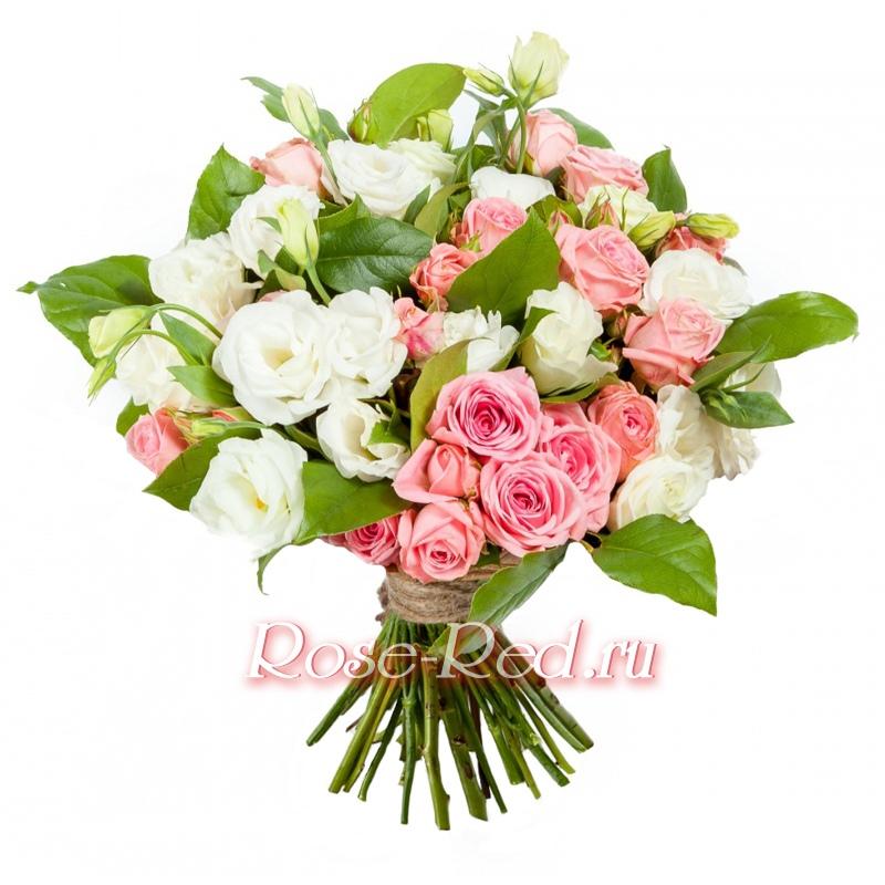Цветы в дмитрове где купить можна на кладбище из дома брать живые цветы